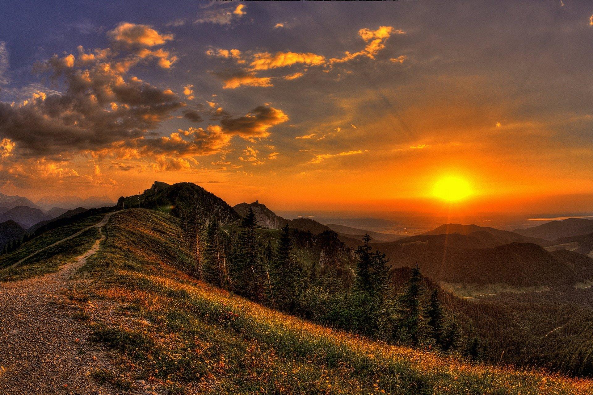 закат лучи солнце цветы горы загрузить