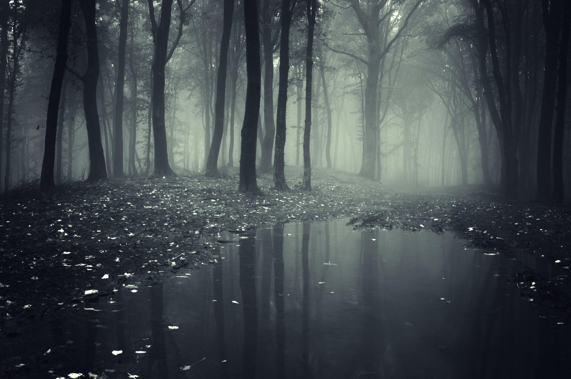 Картинки на аву туман