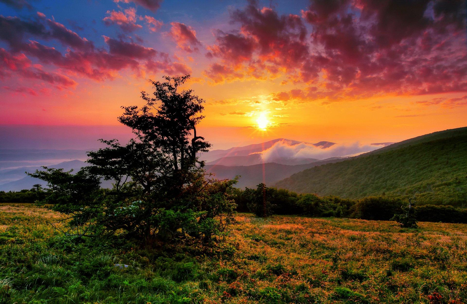 солнца заката картинки природы