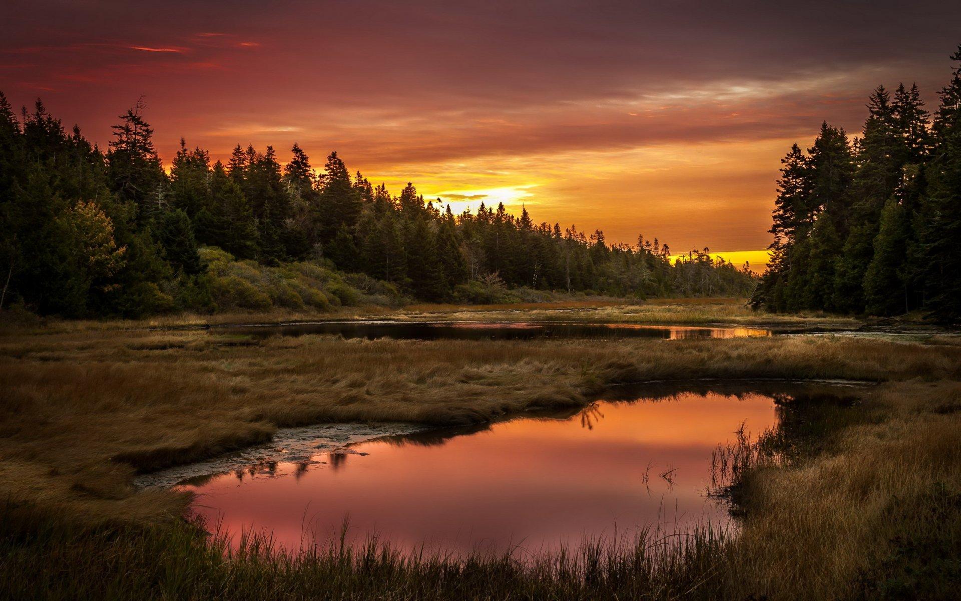 Темный закат над озером  № 3213541 без смс