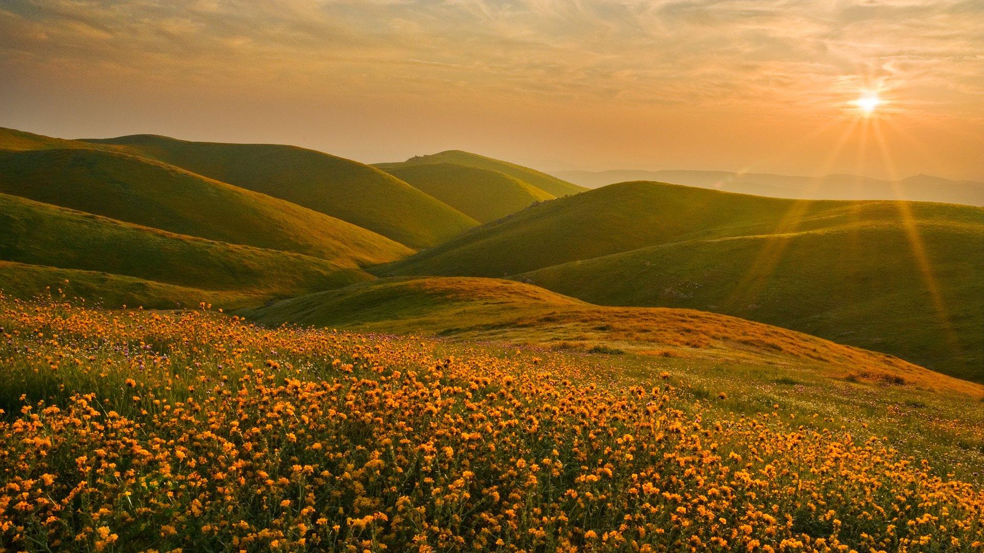 горы закат природа трава солнце онлайн
