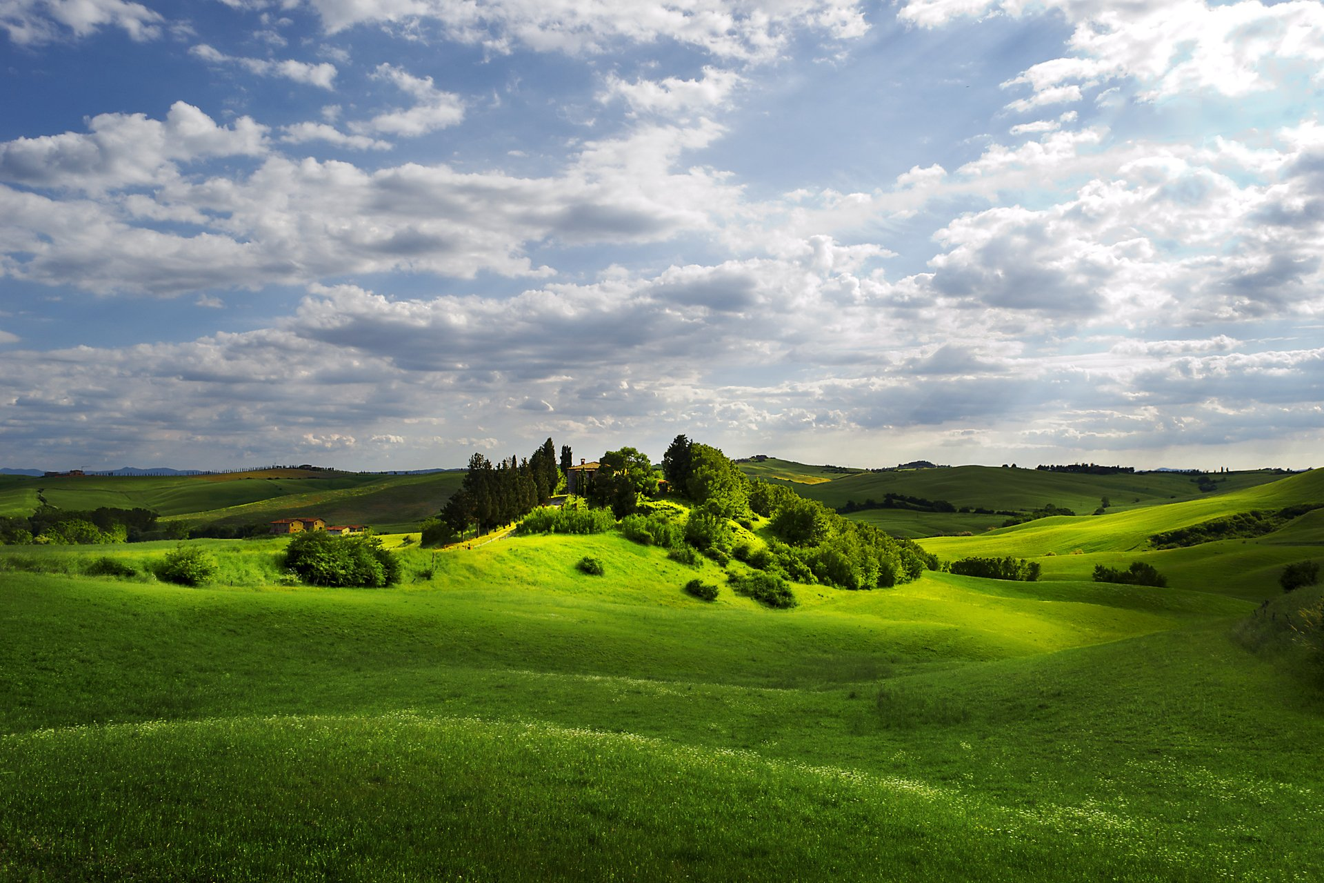 поляна цветы трава холмы горы glade flowers grass hills mountains  № 1829250 без смс