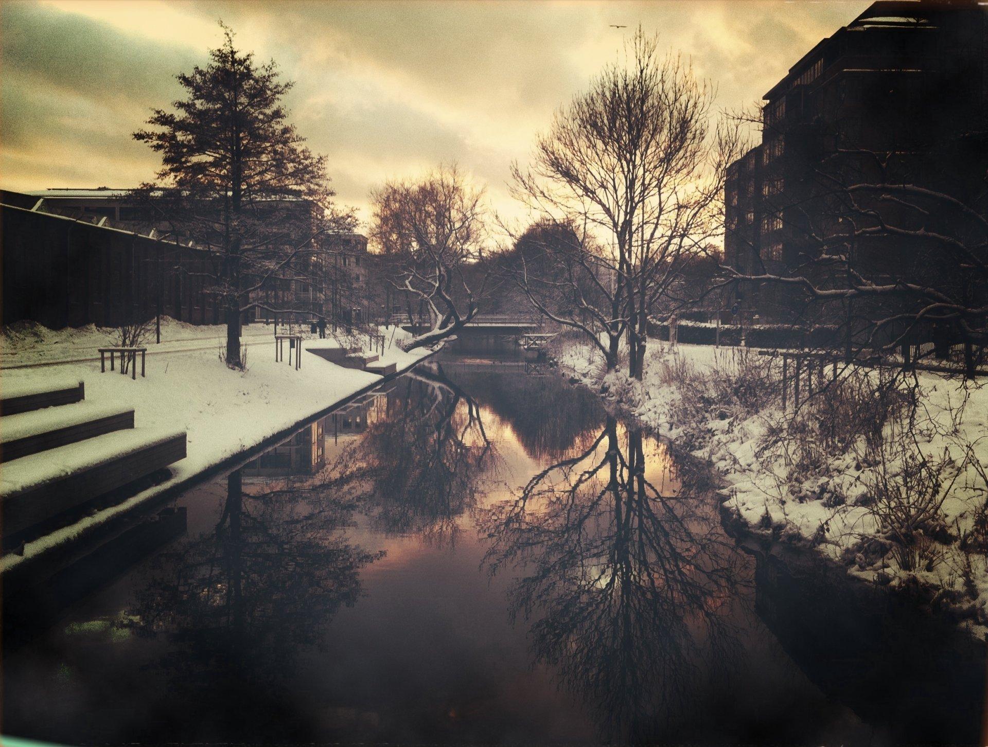 снег деревья мост без смс
