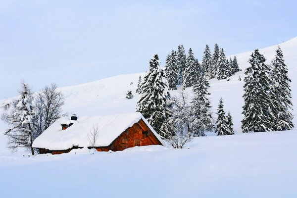 природа дом зима снег небо пейзаж nature winter sky white beautiful cool nice landscape scenery snow house