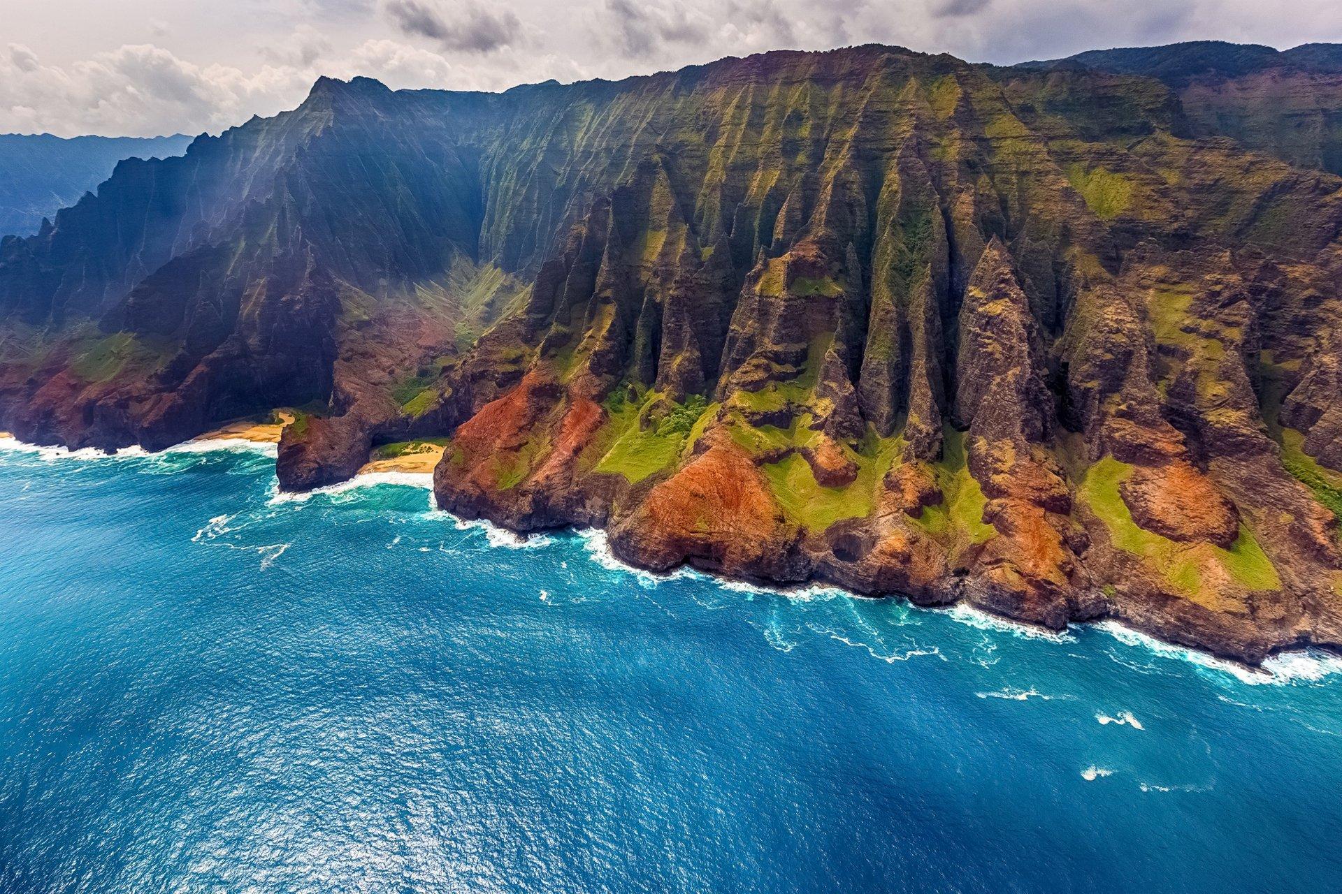 картинка горы лес океан глаза обезьянки