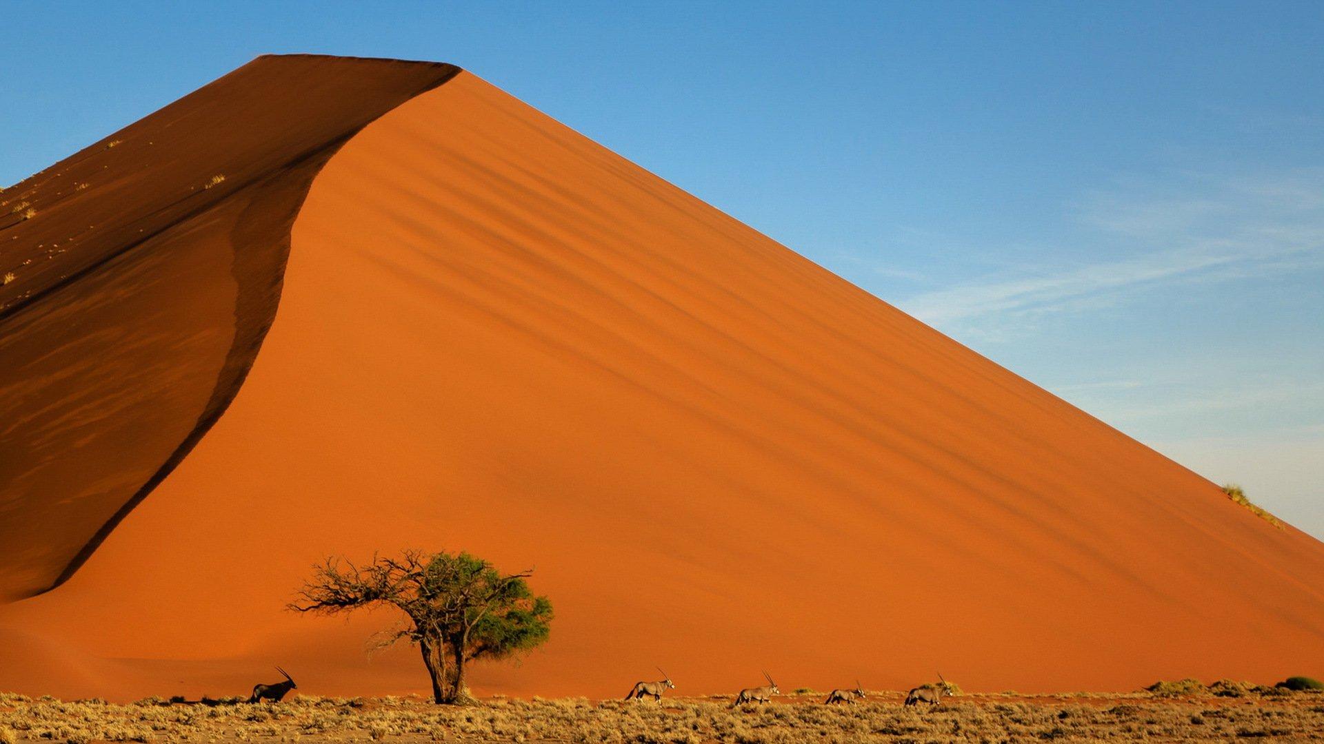 Снилось, что я взбираюсь на гору из песка, и песок обваливается, трудно взобраться.