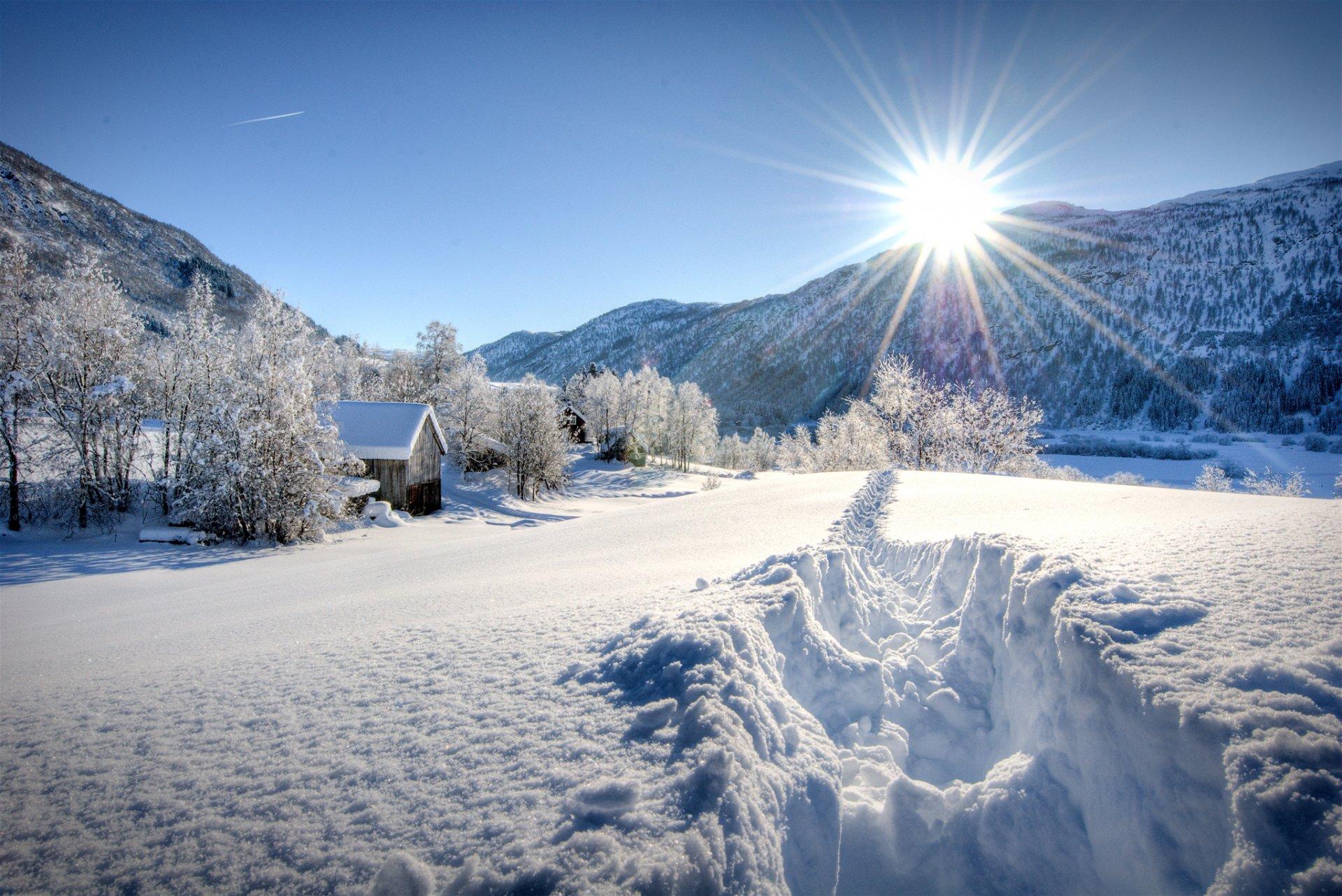 все, фотообои на комп зима в горах садоводы классифицируют