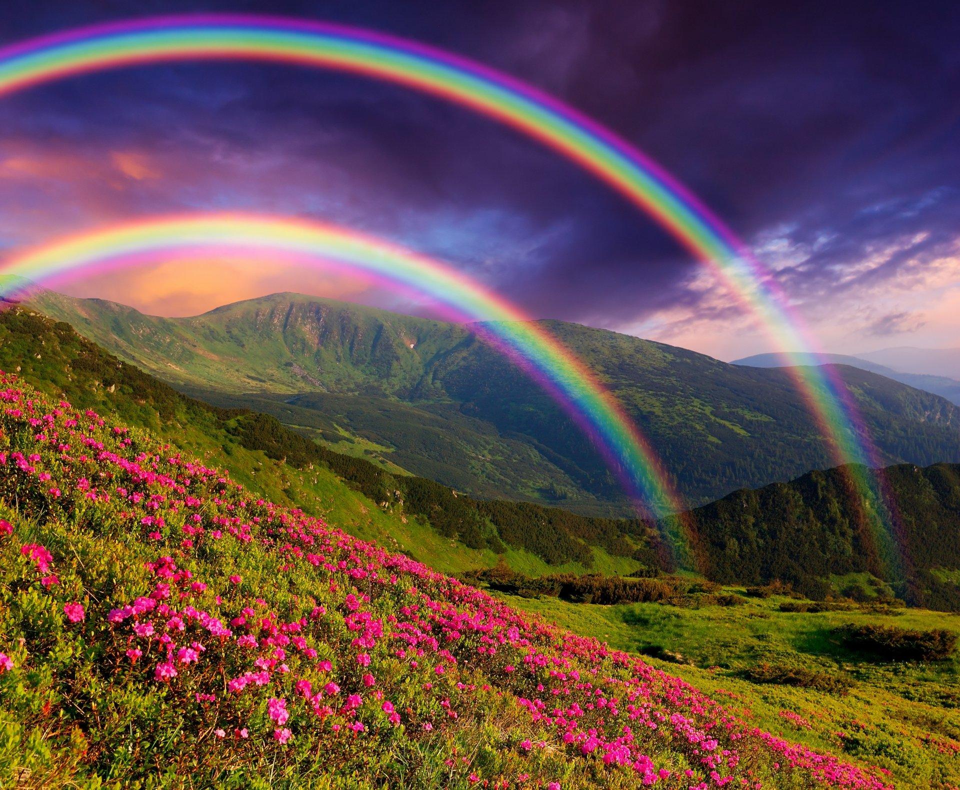 Открытки с радугой и природой, днем строителей