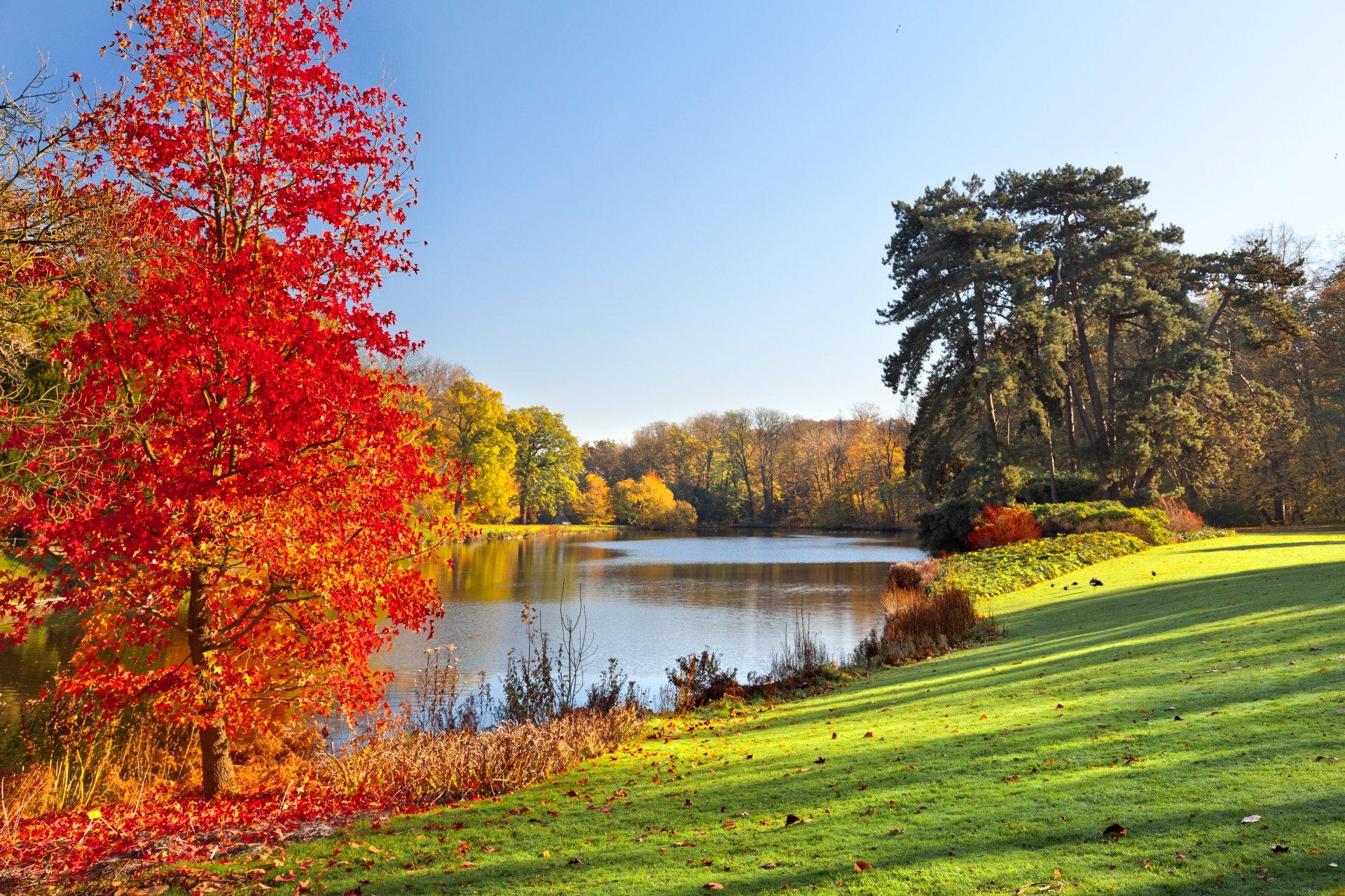 Фото красивые природа осень
