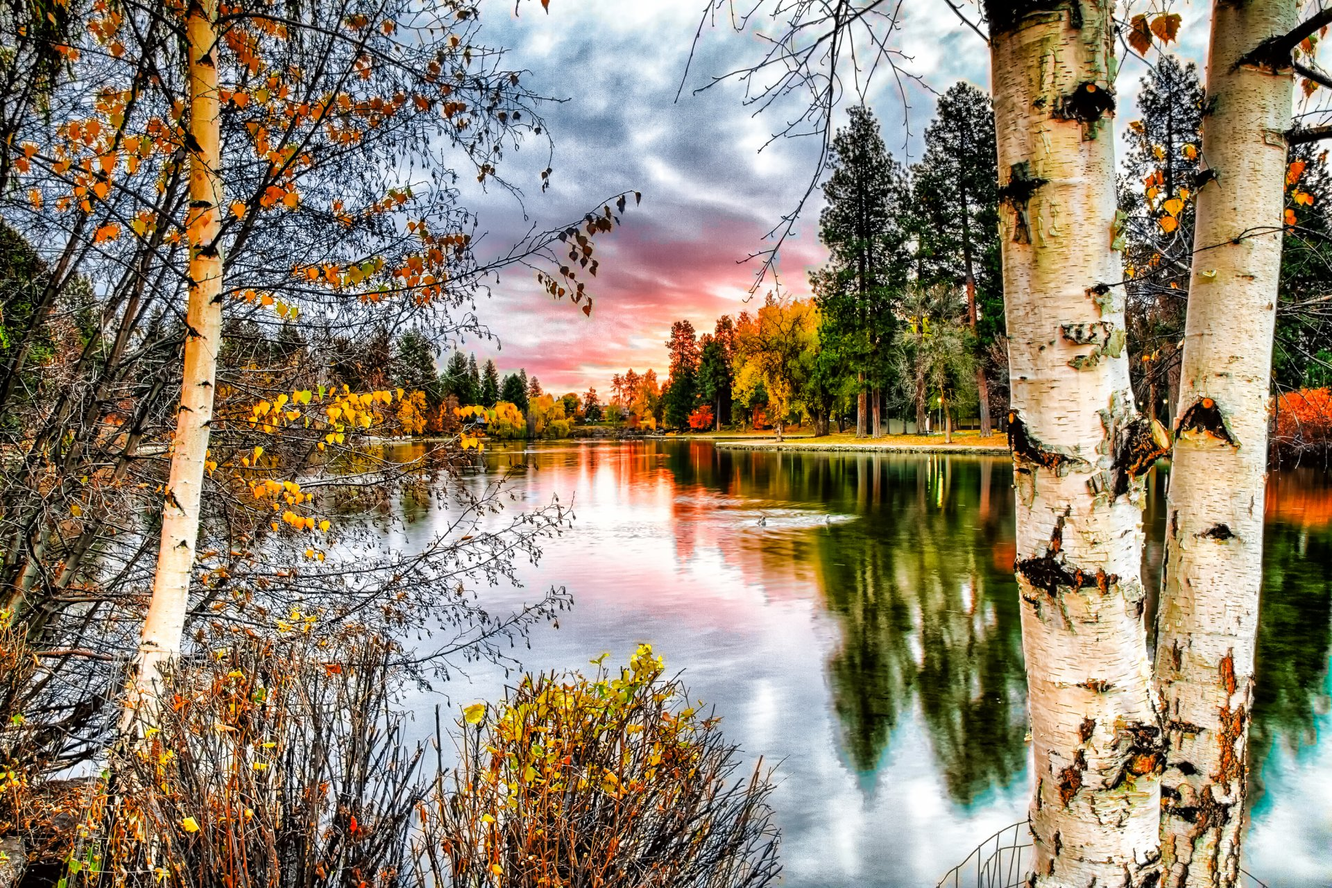 Осень листья небо