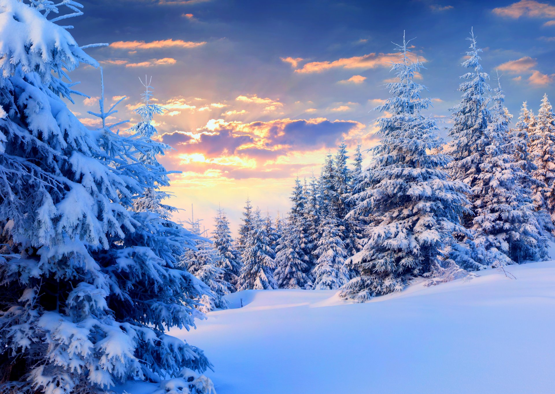 Картинки прекрасная зима