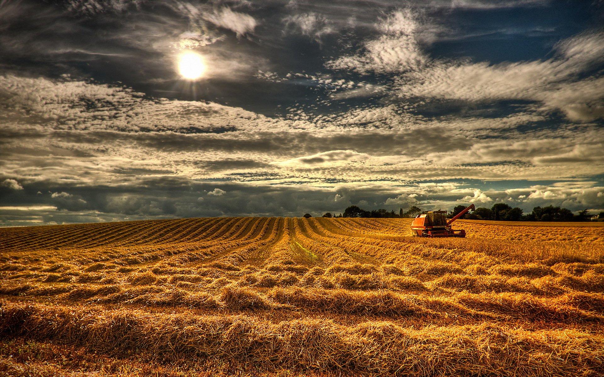США поле сельское хозяйство скачать