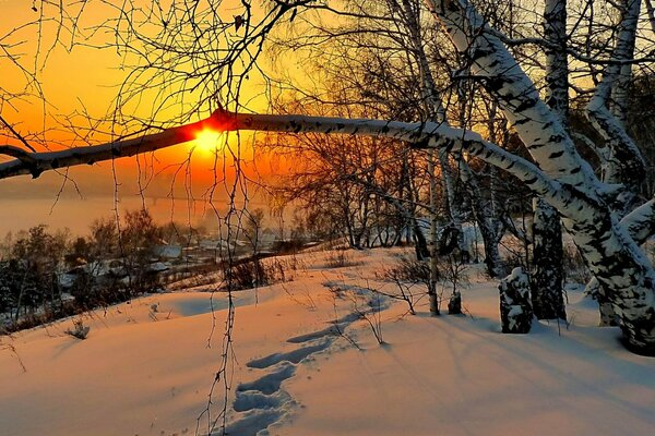 природа дом зима снег небо пейзаж nature winter sky white beautiful cool nice landscape scenery snow house sunset
